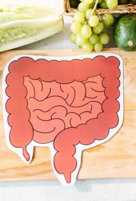 Beslenme Şeklinin Kolon Kanseri (Kalın Bağırsak Kanseri) ile İlişkisi